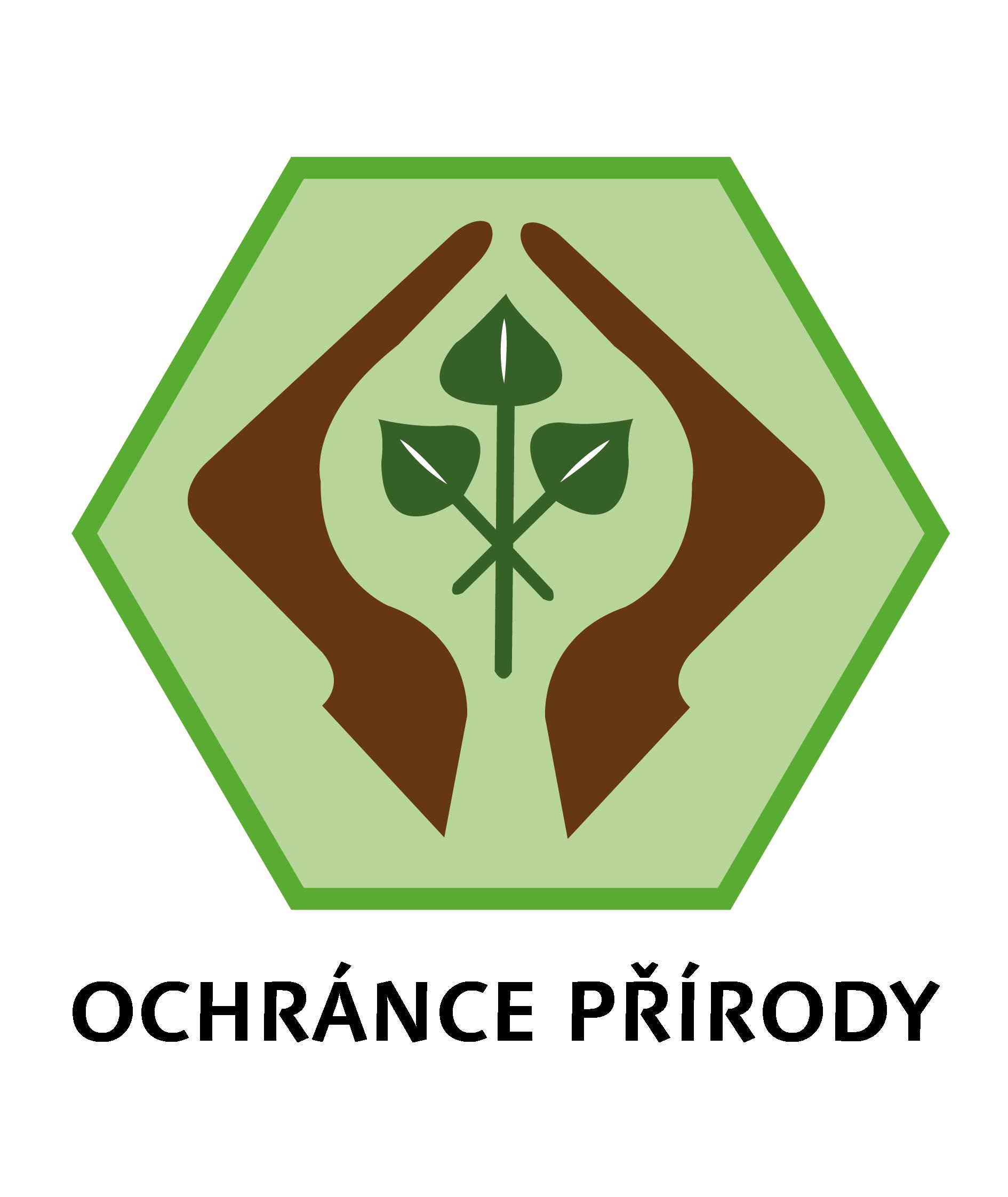 Výzva: Poznej stromy podle šišek