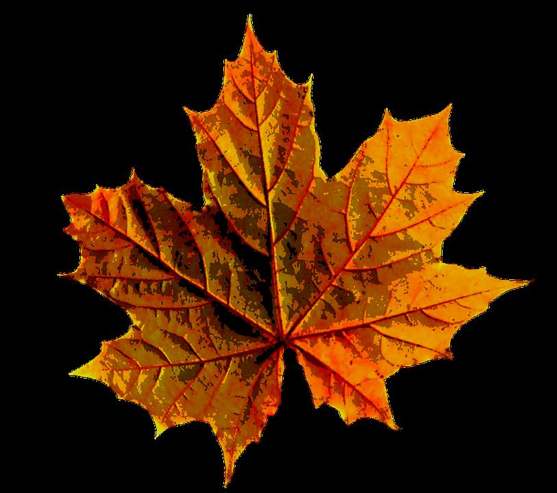 Úřední hodiny o podzimních prázdninách